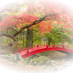 1024x768-japanese-garden-and-red-bridge-royalty-free-stock-image-image.th.png