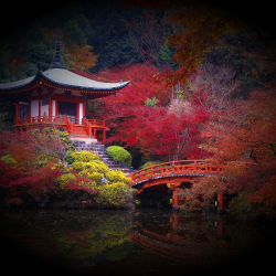 Daigo_ji_Temple_in_Autumn_Kyoto_Japan_Wallpaper.th.png
