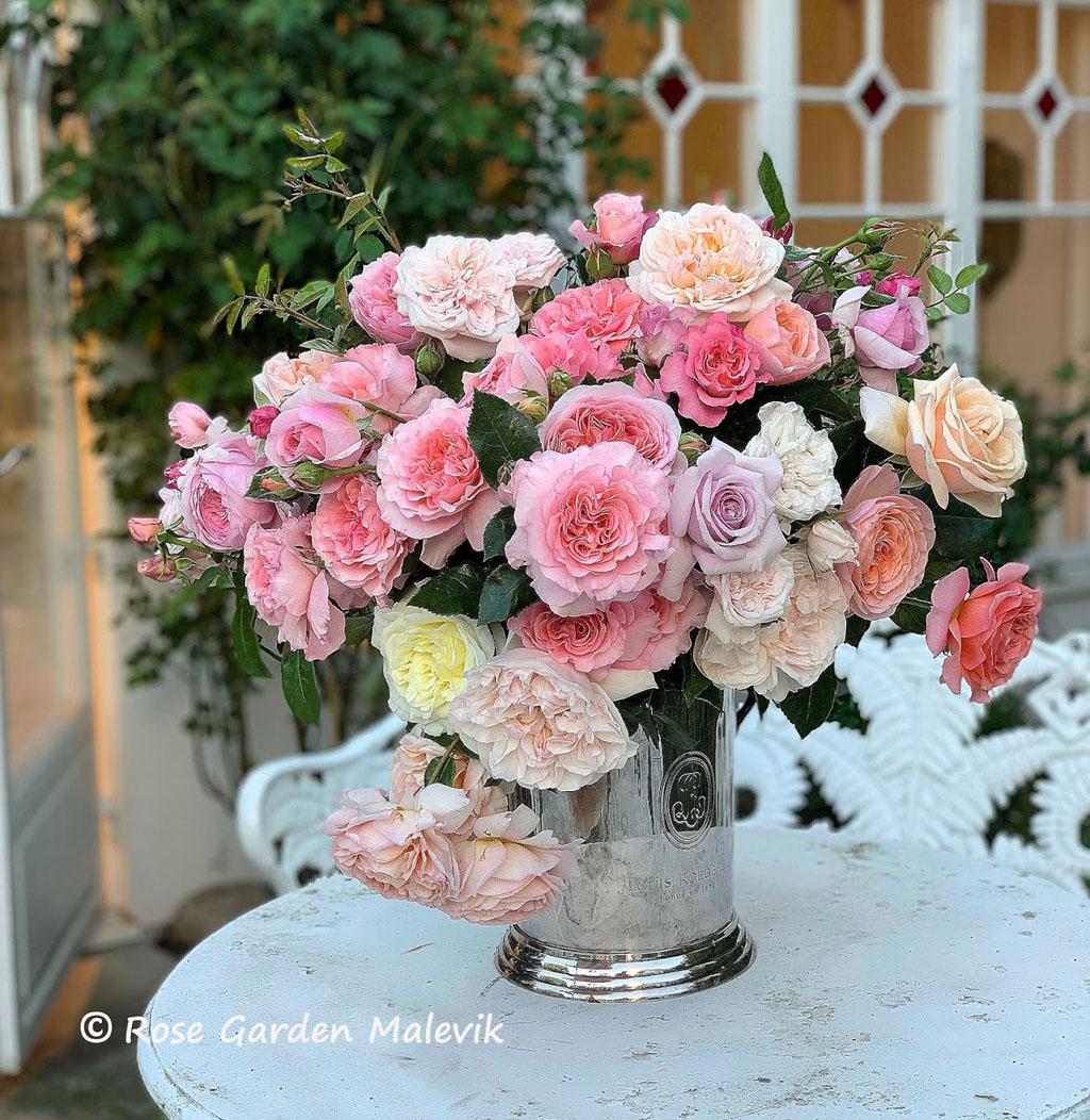 fragrant-roses.jpg